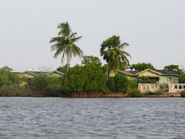 India, Pichavaram mangrove erdő
